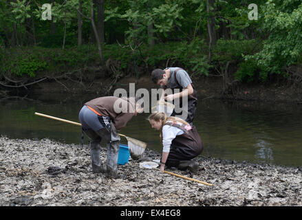 High School students checking nets for aquatic indicators of water quality on a river ecology field trip - Stock Photo