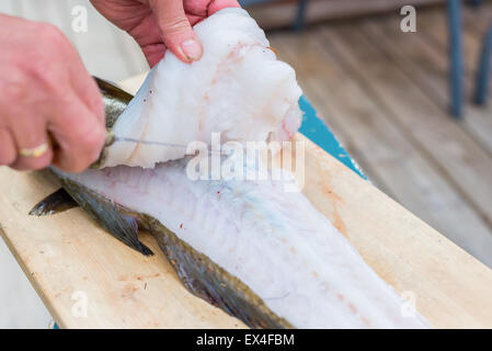 Closeup of man filleting fresh cod - Stock Photo