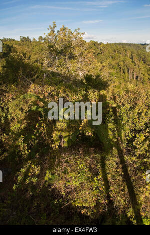 Vertical view from a lookout in Topes de Collantes National Park in Cuba. Stock Photo