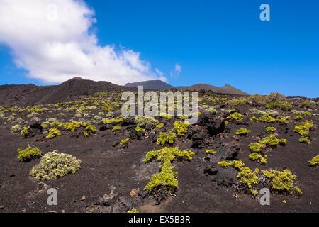 ESP, Spain, the Canary Islands, island of La Palma, solidified lava of the volcano Teneguia at the coast near Fuencaliente. - Stock Photo