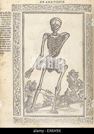 Anatomical illustration from 'Isagogae breues, perlucidae ac uberrimae, in anatomiam humani corporis a communi medicorum - Stock Photo