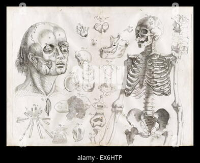 Anatomical illustration by Amé Bourdon, from 'Nouvelles tables anatomiques'; Chambray: 1678. - Stock Photo