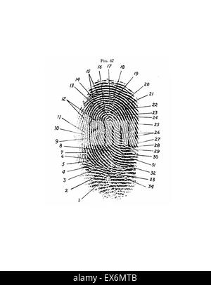 Fingerprint diagram, 1940 Frederick Kuhne, The Finger Print Instructor…Based upon the Sir E. R. Henry System of - Stock Photo