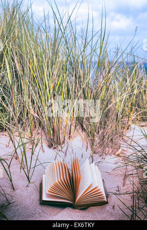 an old book is lying in the dunes on a beach - Stock Photo