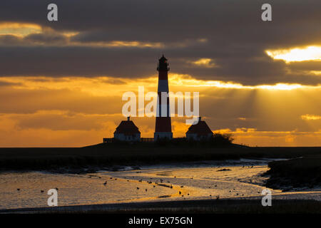 Lighthouse Westerheversand at sunset at Westerhever, Wadden Sea National Park, North Frisia, Schleswig-Holstein, - Stock Photo
