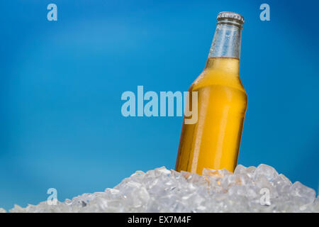 Beer bottle in ice - Stock Photo