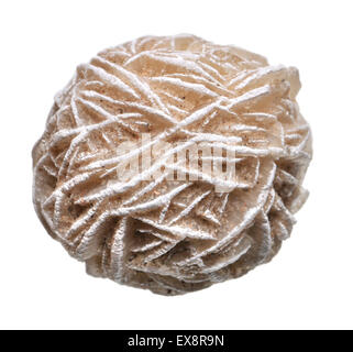 Desert Rose - Baryte (barium sulphate) - Stock Photo