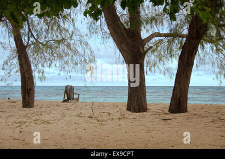 Wooden chairs are under the trees on the sandy shores of the Indian Ocean, Denis island, Seychelles - Stock Photo