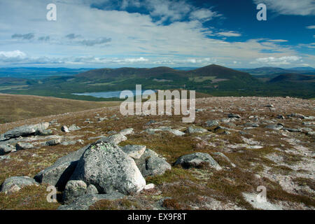 Looking to Meall a Bhuachaille from Creag a' Chalamain, Cairngorm National Park, Badenoch & Speyside - Stock Photo