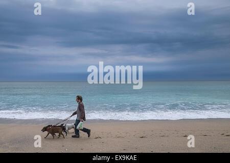 Kiama Coastal Walk Dogs