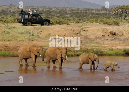 Safari vehicle and elephants at Ewaso (Uaso) Nyiro River, Samburu, Kenya - Stock Photo
