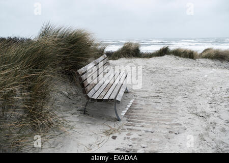 Bench in the dunes in rainy weather, Langeoog, East Frisia, Lower Saxony, Germany - Stock Photo