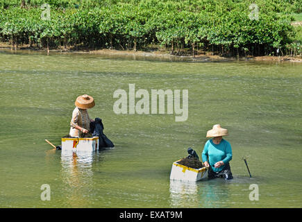 Tai O fishing village, Lantau island, Hong Kong China Chinese - Stock Photo