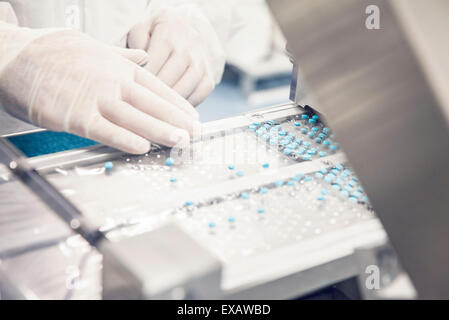 Worker placing pills in tablet trays moving along conveyor belt - Stock Photo