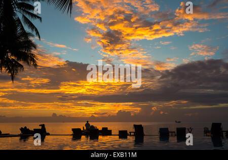 Sunset beach chairs palm trees infinity swimming pool