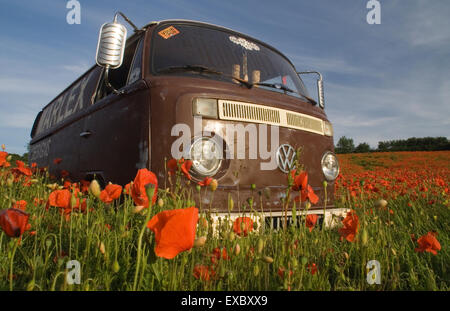 Marlex bus in Poppy Field - Stock Photo