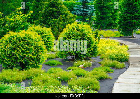 Stone Pathway Walkway Lane Path With Small Green Trees And Cuted Bushes In Garden. Beautiful Alley In Summer Park. - Stock Photo