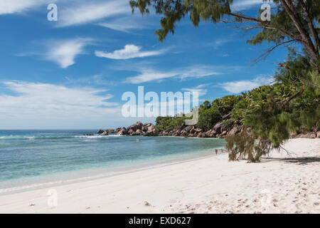 Seychelles,La Digue,Anse Cocos beach,most beautiful beach in the world - Stock Photo