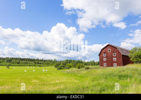 Scenic View of an Old Barn with White Silage Balls with a Blue Sky - Stock Photo