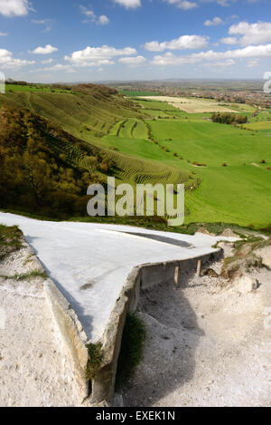 Westbury white horse (Bratton Camp hillfort). Viewed from above the horse's head. - Stock Photo