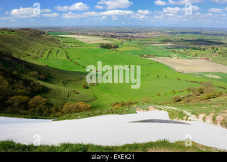 Westbury white horse (Bratton Camp hillfort). Looking towards Westbury from above the horse's head. - Stock Photo