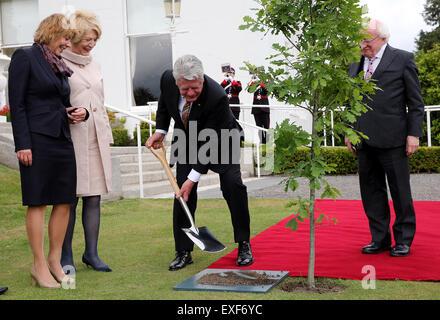 Dublin, Ireland. 13th July, 2015. German President Joachim Gauck (C) plants an oak tree as he is received by his - Stock Photo