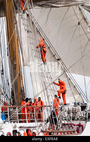 Sailors on board the Ecuadorian tall ship Guayas climb rigging to unfurl the sails. - Stock Photo