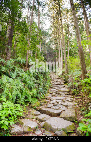 Matsumoto Pass on the Kumano Kodo, a sacred trail and World Heritage site  near Kumano City, Japan. - Stock Photo