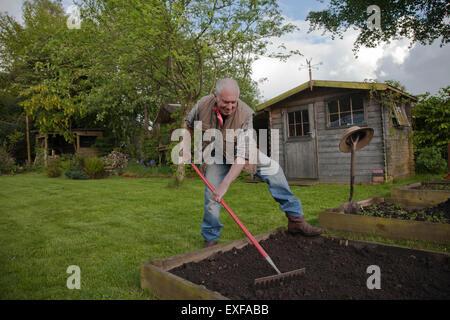 Senior man, raking soil in garden - Stock Photo