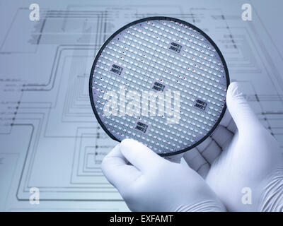 Gloved hands holding silicon wafer in laboratory, close up - Stock Photo
