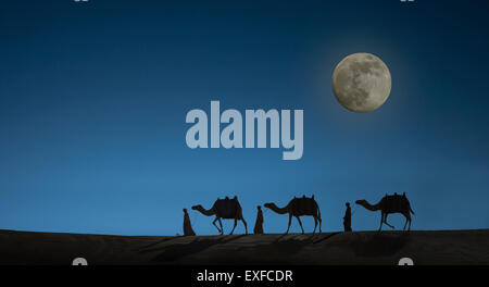 Camel caravan with night sky and full moon, Dubai, United Arab Emirates - Stock Photo