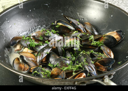 mussels cooked in a pan with white wine sauce - Stock Photo