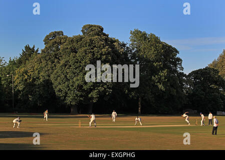 Cricket - Kent Cricket League Division IV 1st XI - Faversham Cricket Club v Cowdrey Cricket Club - Stock Photo