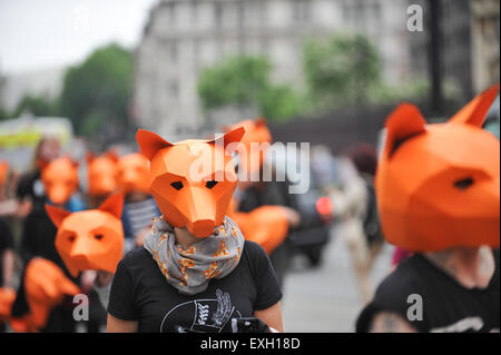 Westminster, London, UK. 14th July 2015. A Fox hunting ban demonstration outside Parliament. Credit:  Matthew Chattle/Alamy - Stock Photo