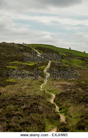 A walker and dog resting on the Cleveland Way between Carlton Bank and Heathwaite on the North York Moors in North - Stock Photo