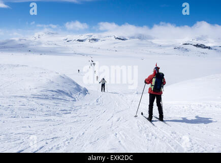 National day 17th May, Norwegians walk on ski , carrying norwegian flags, walk from Finse, highest railway station - Stock Photo
