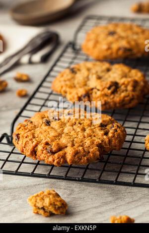 Homemade Oatmeal Raisin Cookies Ready to Eat - Stock Photo