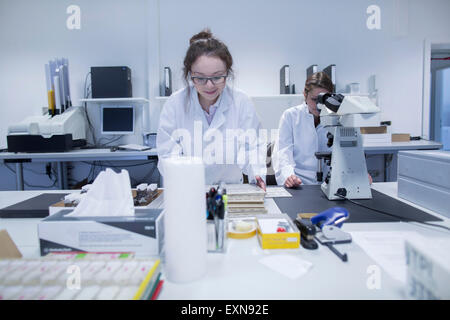 Labratory assistants working at medical laboratory - Stock Photo