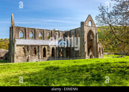 The ruins of Tintern Abbey a medieval Cistercian monastery, Monmouthshire, Wales, United Kingdom, Europe.