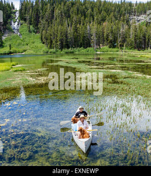 Couple share canoe with dogs in Twin Lakes in Mammoth Lakes Basin in the Eastern Sierra - Stock Photo