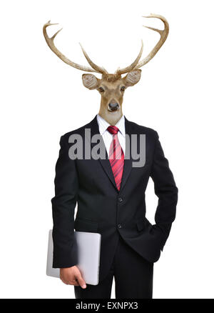 business man with deer head isolated on white background - Stock Photo