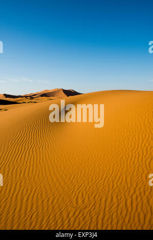 Sand dunes in morning light, Merzouga, Meknès-Tafilalet Region, Morocco - Stock Photo