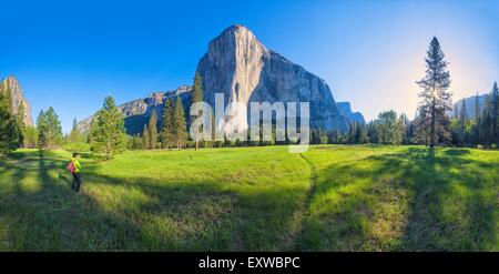 Woman on meadow at El Capitan, Yosemite National Park, California, USA - Stock Photo