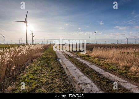 Landscape with wind turbines in Dithmarschen, Schleswig-Holstein, Germany - Stock Photo