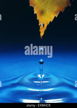 Falling drop of water - Stock Photo