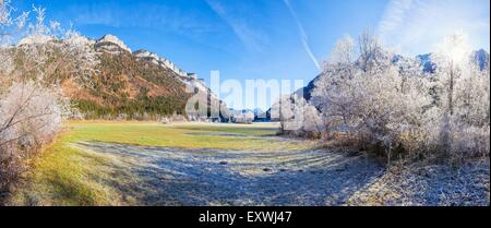 Meadows and shrub, Loferer Steinberge, Tyrol, Austria, Europe - Stock Photo