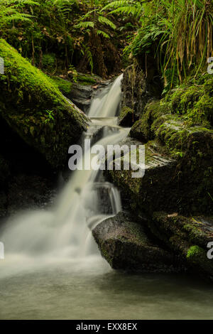 Panoramic View Of A Small Cove With A Waterfall Photograph ... |Small Cove Waterfall