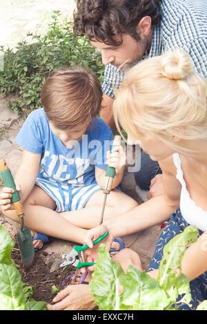 Little boy helping his parents work in vegetable garden - Stock Photo