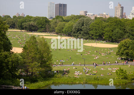 ... Turtle Pond And The Great Lawn In Central Park New York City   Stock  Photo