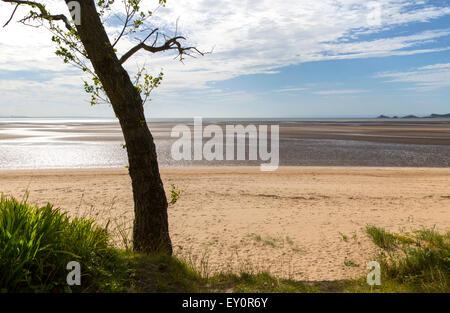 Beach at low tide, Swansea Bay, Swansea, South Wales, West Glamorgan, UK - Stock Photo